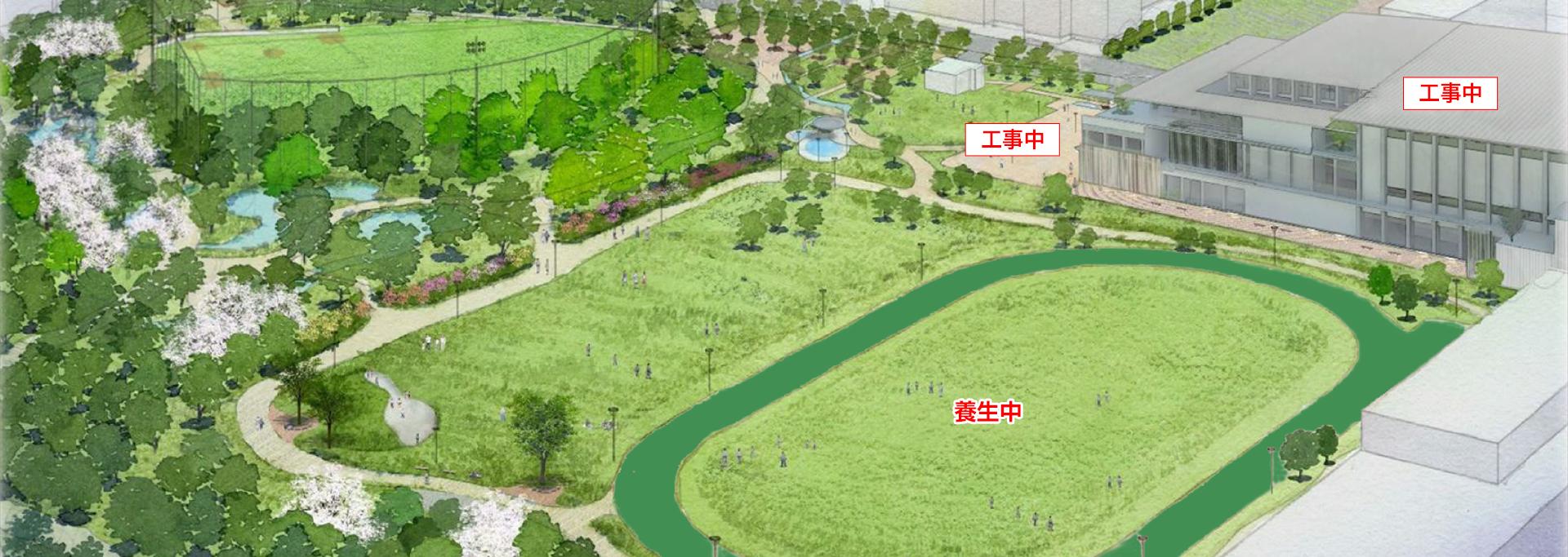 中野区立平和の森公園は、300mトラックや多目的運動広場などを併設し、スポーツとみどりで健康・交流を育みます。